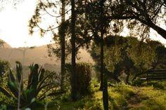 Exteriores de uno de los espacios de Convivencias-Taller: Las Javerianas.5