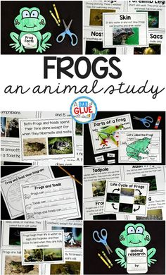 Engage your class in an exciting hands-on experience learning all about frogs! This Frog Animal Study is perfect for science in Preschool, Pre-K, Kindergarten, First Grade, and Second Grade classrooms and packed full of inviting science activities.  Students will learn about the difference between frogs and toads, animals that live in the freshwater and animals that live in saltwater, parts of a frog, and a frog's life cycle. When students are done they can complete a frog research project. T...