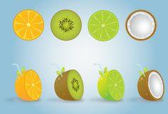Delicious fruit vector graphics