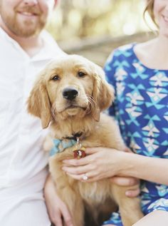 © Emily Katharine Photography Engagement photos with puppy, Golden Retriever