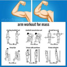 Build Muscle: Arm Workout to Build Muscle Mass Bodybuilding Training, Bodybuilding Workouts, Fitness Gym, Body Fitness, Mens Fitness, Health Fitness, Chest Workouts, Gym Workouts, Cardio Gym