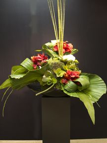 Tropical wrap - Giant phalenopsis, Succulent pick, Echeveria, sedum plant and spray, Amaryllis stem and chives Bush