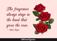 The fragrance always stays in the hand that gives the rose - Hada Bejar Rose Quotes, Famous Author Quotes, Powerful Quotes, Rose Petals, Daily Quotes, Quote Of The Day, Wise Words, Fragrance, Sayings