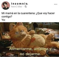 Funny Spanish Memes, Spanish Humor, Stupid Funny Memes, Triste Disney, Comic Games, Funny Animal Videos, Big Bang Theory, Best Memes, Funny Images