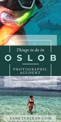 Things To Do in Oslob, Cebu, Philippines - Photographic Account – Zaneta Baran Padi Diving, Scuba Diving, Stuff To Do, Things To Do, Diving Course, Filipino Food, Philippines Travel, Koh Tao, Short Trip