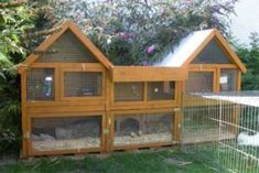 Instant Access To Woodworking Designs, DIY Patterns & Crafts Guinea Pig Hutch, Bunny Hutch, Guinea Pigs, Rabbit Enclosure, Outdoor Cat Enclosure, Large Rabbit Hutch, Rabbit Hutches, Bunny Cages, Rabbit Cages
