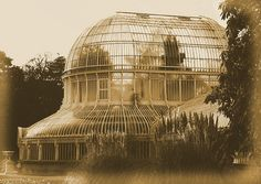 The Palm House, Belfast Botanic Gardens