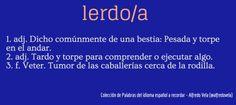Lerdo/a