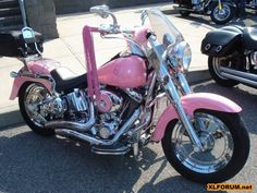 Harley Davidson the Sportster                  (The one and only Girly Bike ..)