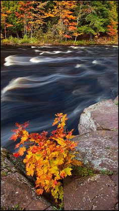 Rapids on the Presque Isle River in Fall, Porcupine Mountains Wilderness State Park, Upper Peninsula, Michigan   KGC Photo