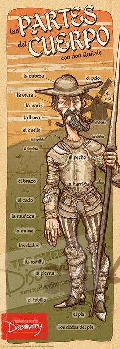 Partes del cuerpo -Don Quijote Spanish vocabulary for body parts If you find this info graphic useful, please share, like or pin it for your friends. Spanish Basics, Ap Spanish, Spanish Grammar, Spanish Vocabulary, Spanish Words, Spanish Language Learning, Spanish Teacher, Spanish Classroom, Spanish Lessons