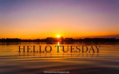 Hello Tuesday.