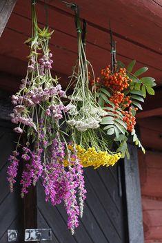 Plants, Diy, Bricolage, Diys, Planters, Handyman Projects, Do It Yourself, Plant, Planting