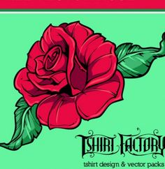 Red rose vector graphic illustration