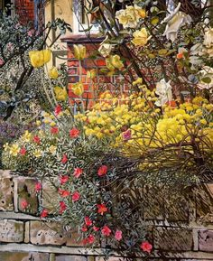 Stanley Spencer, (English painter, Rock Roses Old Lodge Taplow 1957 Stanley Spencer, Garden Painting, Garden Art, Painting & Drawing, Glasgow, Bristol, English Artists, British Artists, Portraits