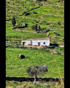 "Yannis Chaniotis on Instagram: ""#Paros #Greece #cyclades #cyclades_islands #Aegean #wu_greece #greecetravelgr1_  #unlimitedgreece #greecelover_gr #expression_greece…"""