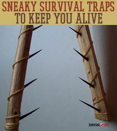 9 Kickass Booby Traps to Rig Your Homestead | DIY Hunting, Trapping and Survival Tips by Survival Life http://survivallife.com/2014/03/31/booby-traps-diy-home-security/