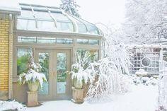 Snow Scenes by Marilyn Cornwell Snow Scenes, Winter Scenes, Blossom Garden, Snow Flower, Winter's Tale, Garden Quotes, Through The Window, Winter Landscape, Balcony Garden