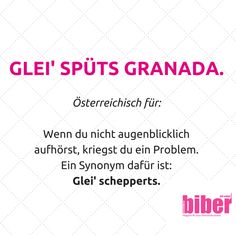 Österreichische Floskel Status Quotes, E Cards, True Stories, Austria, Fun Facts, Meant To Be, Laughter, Language, Lol