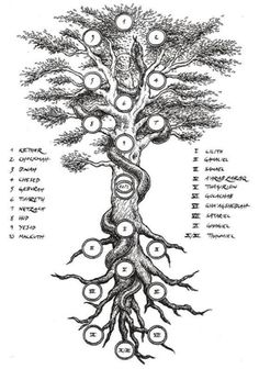 Qabalistic Tree of Life and the Qliphoth.