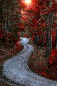 Red Scotland path.