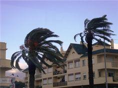 El vocabulario (verbo): Azotaba - Dar golpes el viento, la lluvia, las olas, etc., de forma repetida y generalmente violenta.