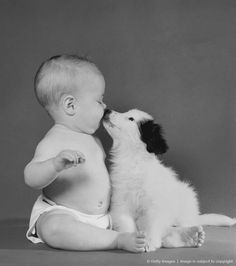 Haha it's just something about dogs and babies