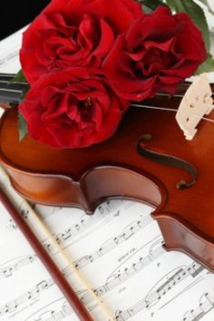 violins and roses - Google Search