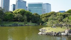 浜離宮恩賜庭園 en 中央区, 東京都  • Jardín Hamarikyu