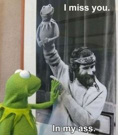 I miss you.. - funny pictures - funny photos - funny images - funny pics - funny quotes - #lol #humor #funny