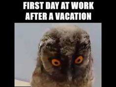 FIRST DAY AT WORK AFTER A VACATION