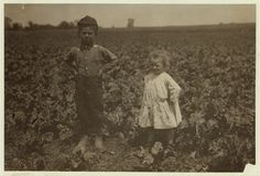 Six-year old Henry and three-year old Hilda, beet workers on a Wisconsin farm.  July 1915.