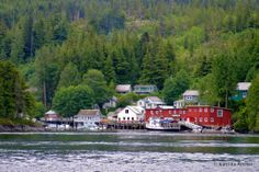 Telegraph Cove; Northern Vancouver Island, B.C., Unparalleled Orca whale and grizzly bear watching in August during salmon migration.  One of my most favorite vacations