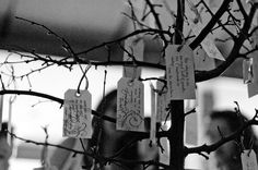 Wishing Tree and Vintage Typewriter Guestbook Ideas! Wedding Messages, Wedding Wishes, Our Wedding Day, Wedding Events, Dream Wedding, Wedding Stuff, March Of Dimes, Guest Book Tree, Vintage Typewriters
