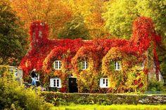 Tu Hwnt I'r Bont Tearoom in Llanrwst, North Wales2