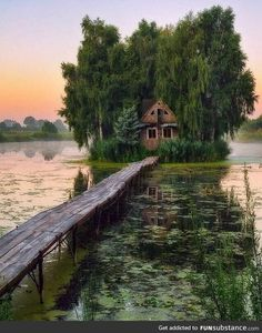 Abandoned house in the swamp Abandoned Buildings, Abandoned Places, Natur Wallpaper, Trees To Plant, Beautiful Landscapes, Places To See, Nature Photography, Beautiful Places, Amazing Places