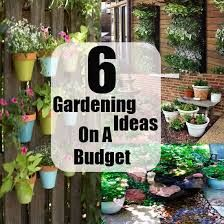 Image result for small courtyard ideas on a budget