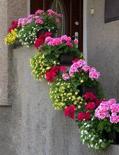 Výsledek obrázku pro rozkvitnuté balkóny a okná