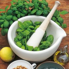 Herb Seed - Basil Sweet: Annual with larger leaves than Bush Basil. A widely used herb, especially in cooked tomato dishes.
