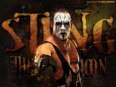 Sting...WWE