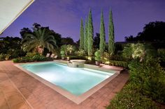 This rectangular lap pool is surrounded by lush landscaping including palm trees and container grown boxwoods. Towering cypress trees add privacy and a sliver of shade to this backyard retreat.