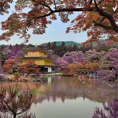 ⠀⠀⠀⠀⠀⠀⠀⠀⠀ ✪✪ Photo by: @mahakemala 📍Location: Golden Temple, #Kyoto #Japan ⠀⠀⠀⠀⠀⠀ ✦ Selected by: @marwank33 ✦ Valid Tag: #Main_Vision ✦ #mahakemala_mainvision