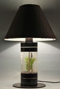 Aquarium Table Lamp #decoration #lighting #fish