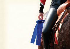The adventures that occur in a single day at a horse show.