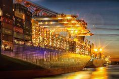 CSCL Globe im Abendlicht | Bildschönes Hamburg