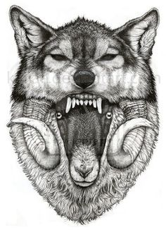 """""""Cuidaos de los falsos profetas, que vienen a vosotros con vestidos de ovejas, pero por dentro son lobos rapaces.""""Mateo 7:15 ღ✟"""