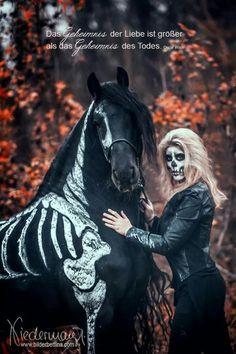 #halloween #horse #black #autumn #fall