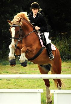 Love the focus on the rider :-).  I knew a girl once that had that passion and focus.