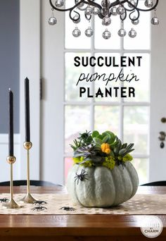 Succulents and pumpkins come together to add a little spooky style to your table with this DIY Succulent Pumpkin Planter from Inspired by Charm. Holidays Halloween, Halloween Crafts, Halloween Decorations, Halloween Tricks, Halloween 2020, Succulent Arrangements, Succulents Diy, Planting Succulents, Fall Home Decor