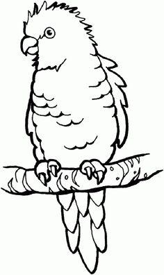 Papagei 036 kostenlose Malvorlagen